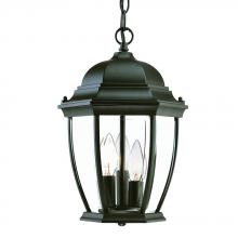 Acclaim Lighting 5036BK - Wexford Collection Hanging Lantern 3-Light Outdoor Matte Black Light Fixture