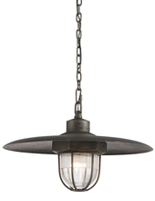 Troy FL3897 - ACME 1LT PENDANT MEDIUM