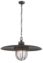 Troy FL3898 - ACME 1LT PENDANT LARGE