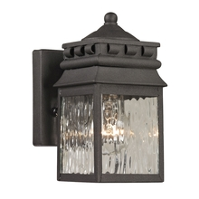 ELK Lighting 47060/1 - Outdoor Wall Sconce
